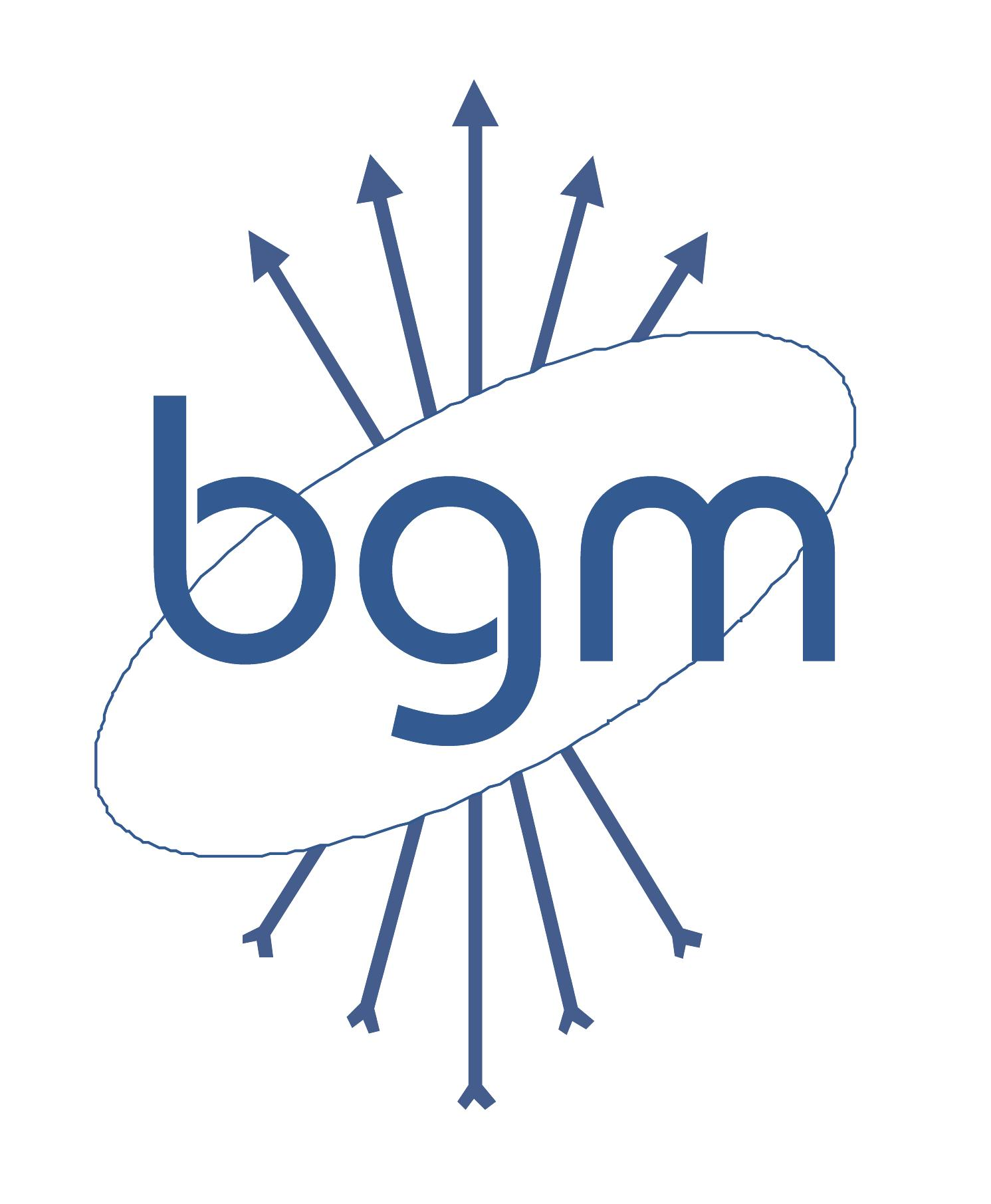 BGM Elettronica partner of LIPOVISOR